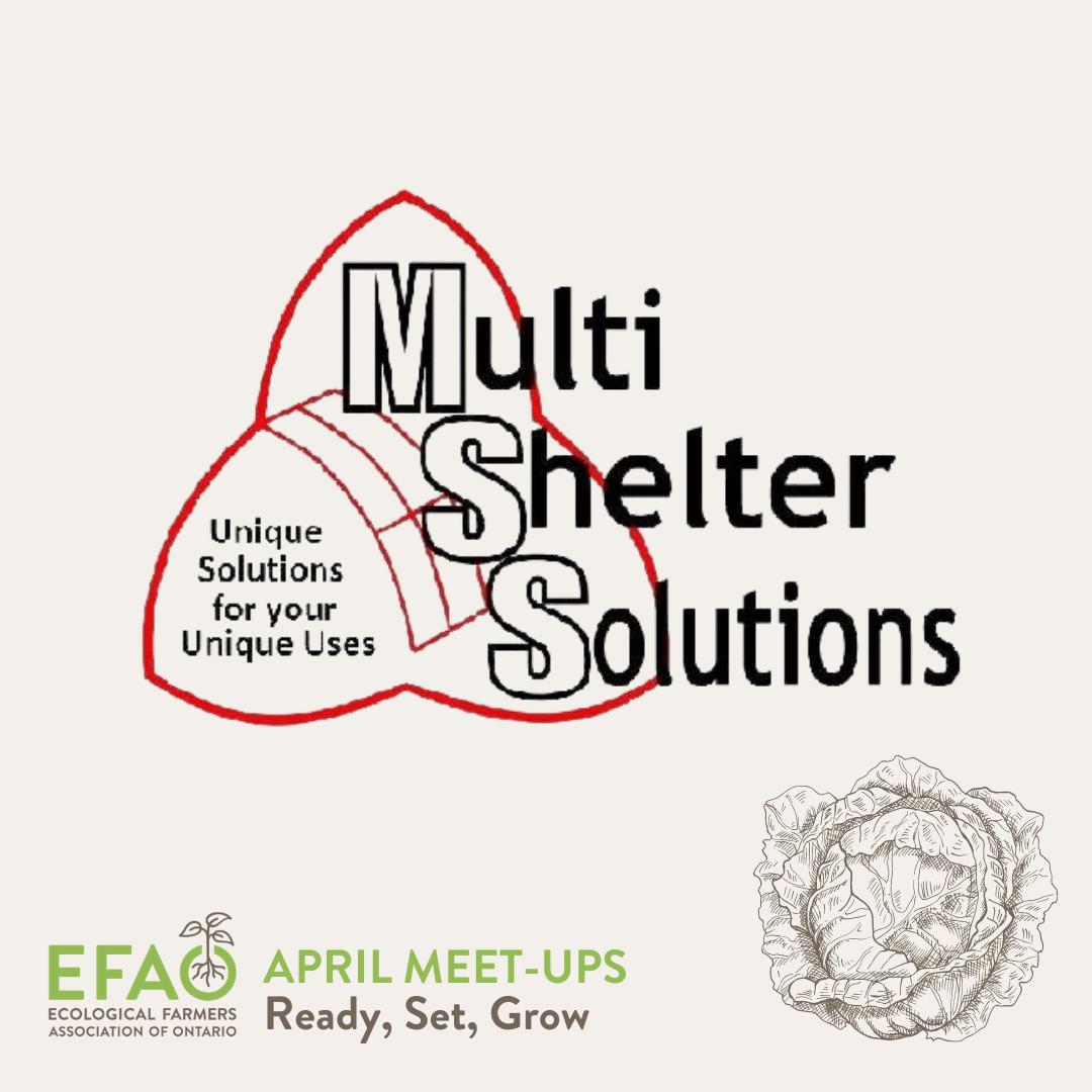 Multi Shelter Solutions logo