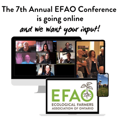 The 7th Annual EFAO Conference is moving online!