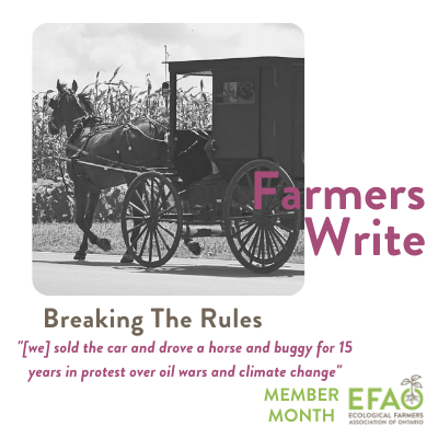 Farmers Write horse & buggy