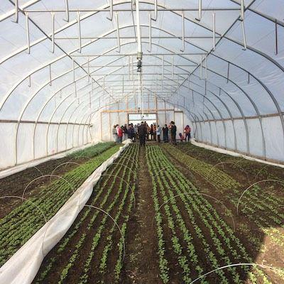 Season Extension at Common Ground Farm