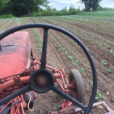 June Seed Grower Meet-Up