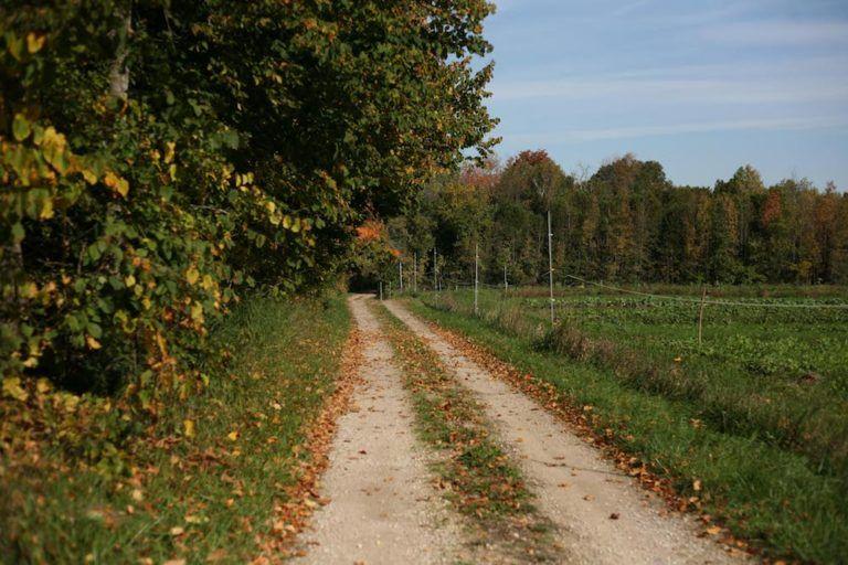 long farm driveway