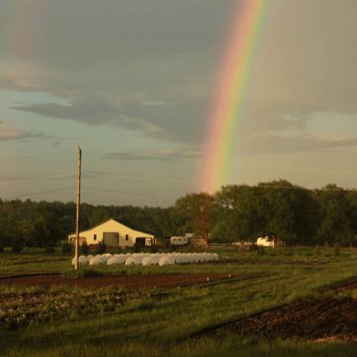 Farming in Northeastern Ontario at Field Good Farms