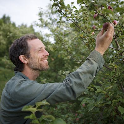 A white person with short brown hair smiles up at an apple they are holding on the branch of a tree