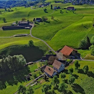 Aerial view of green farm fields and house